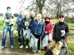 Litter pick volunteers